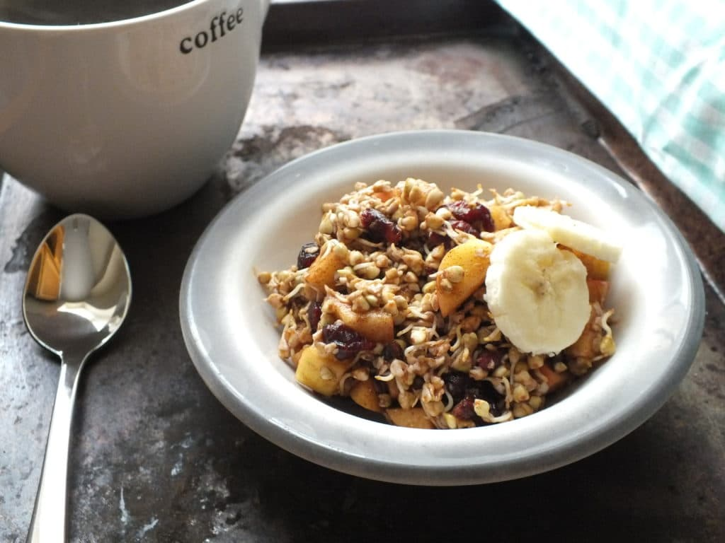Cranberry-Apple Sprouted Buckwheat Cereal