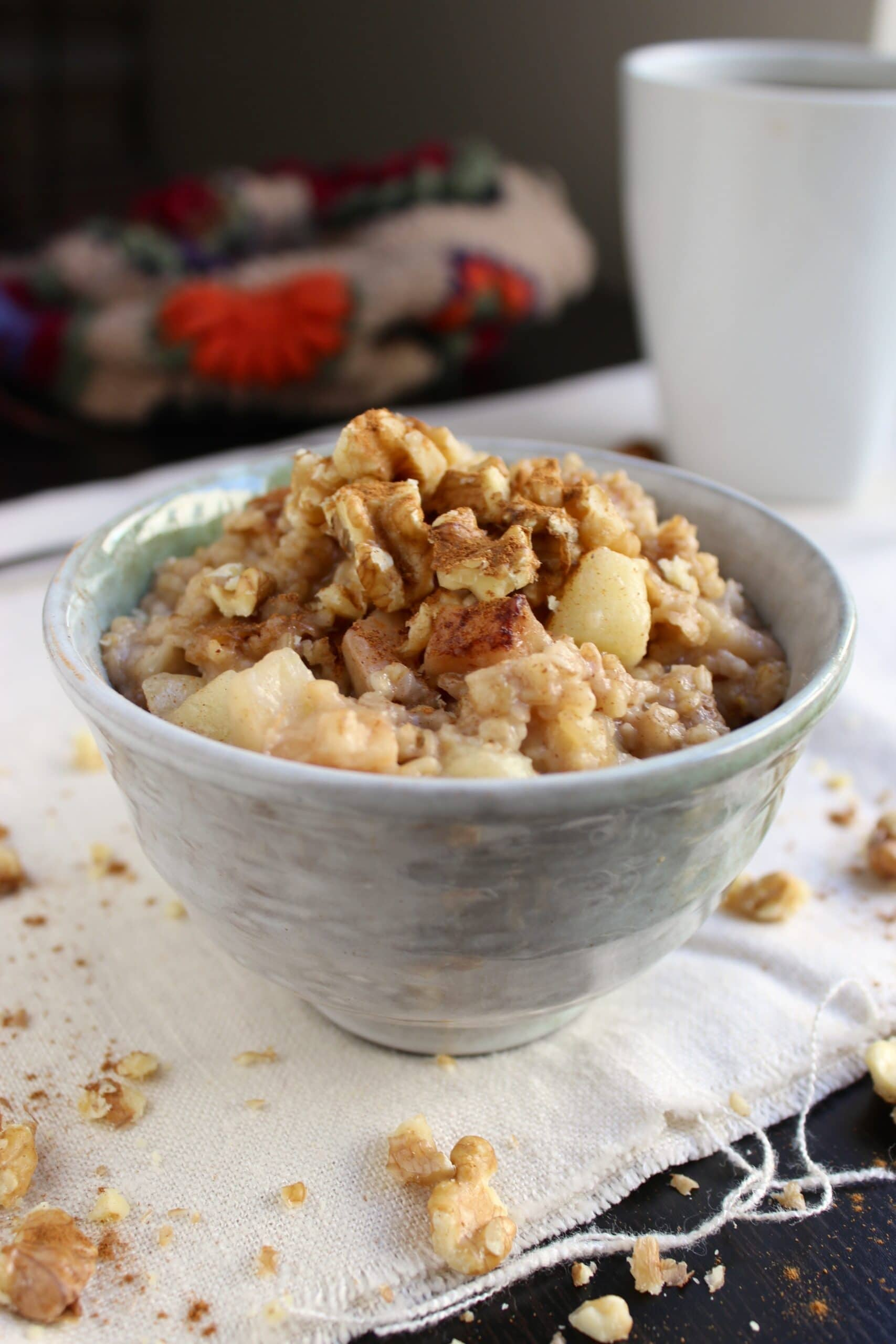 Overnight Slow Cooker Oatmeal – Cinnamon Apple - The Fitchen