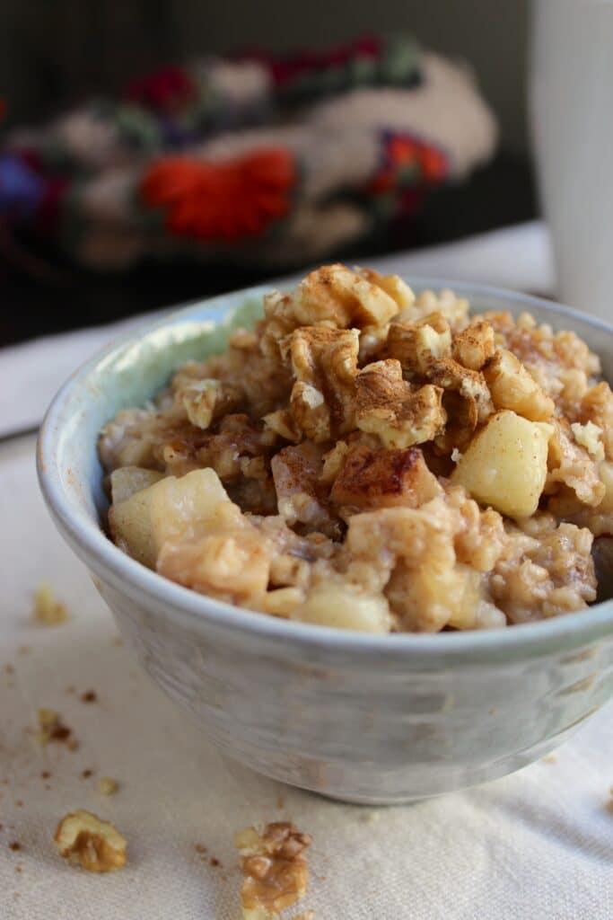 Overnight Slow Cooker Oatmeal in Bowl Cinnamon Apple