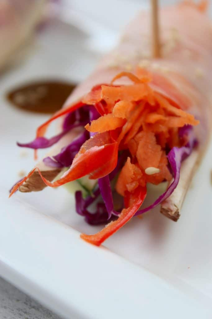 Veggie Spring Rolls with Spicy Coconut Curry Sauce Close up