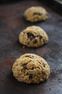 Clark's Vegan and Gluten Free Chocolate Chip Cookies