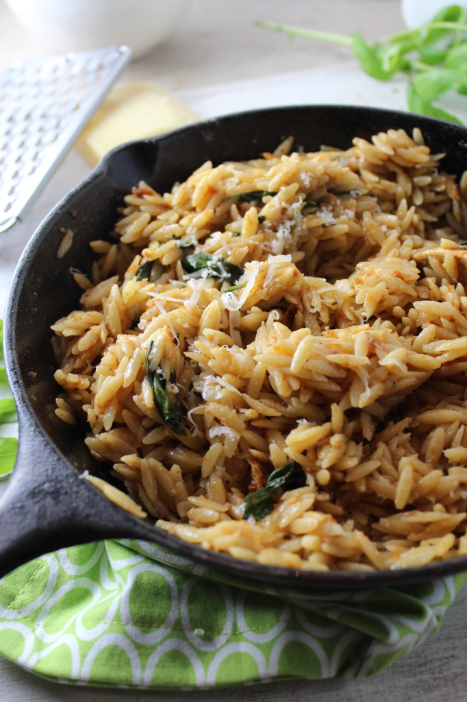 20-Minute Orzo with Creamy Sun-Dried Tomato Basil Sauce