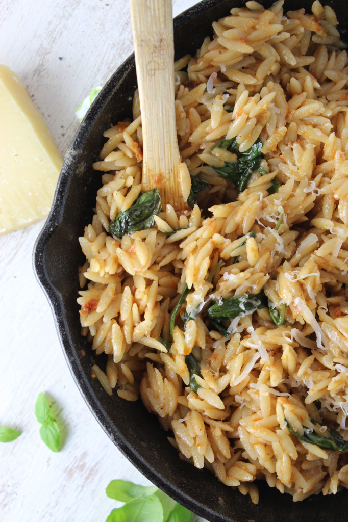 20-Minute Orzo with Creamy Sun-Dried Tomato Basil Sauce – The Fitchen