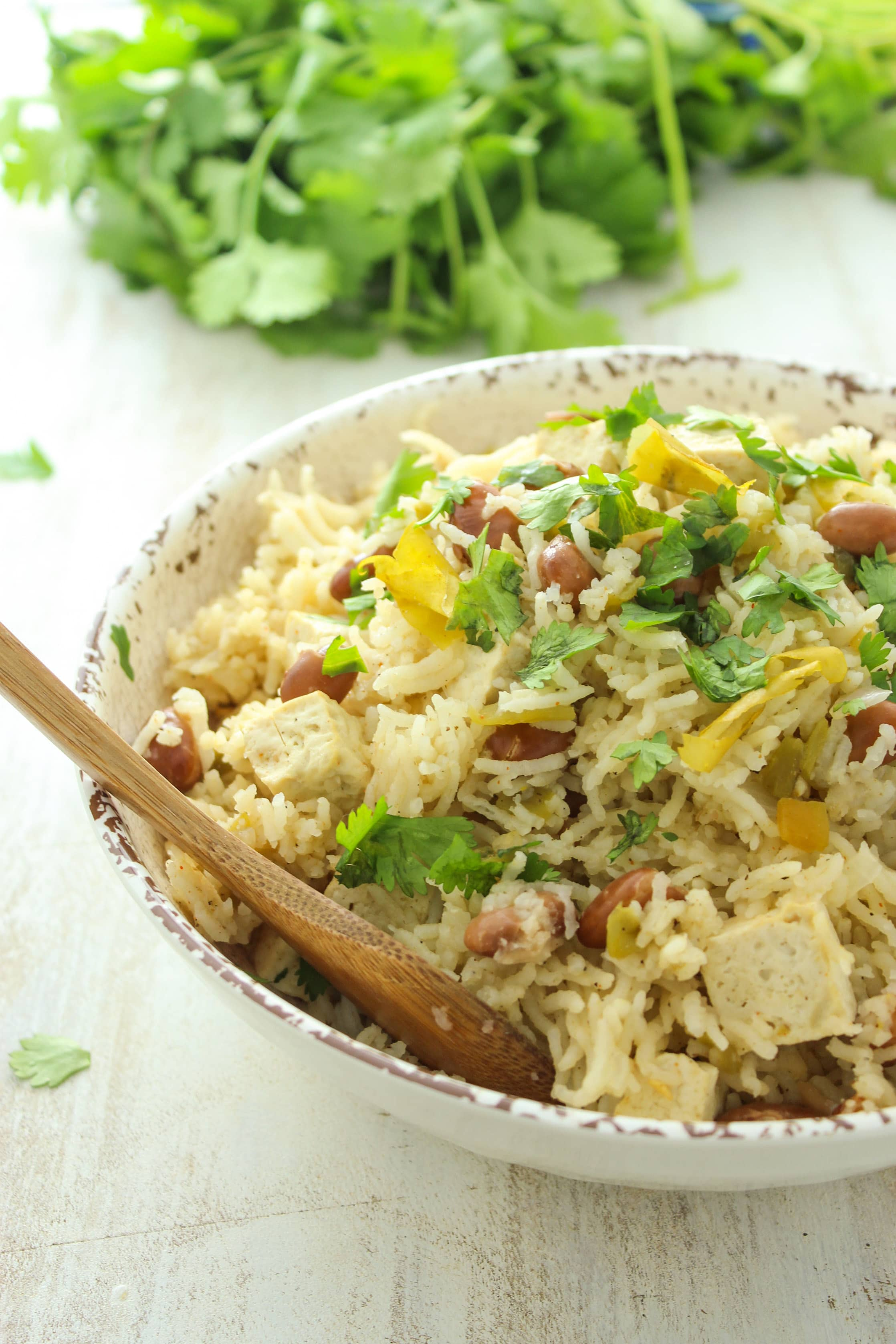 Chile Verde Tofu and Rice