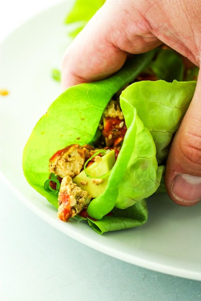 Hand Holding Spicy Tofu Mushroom Lettuce Wrap
