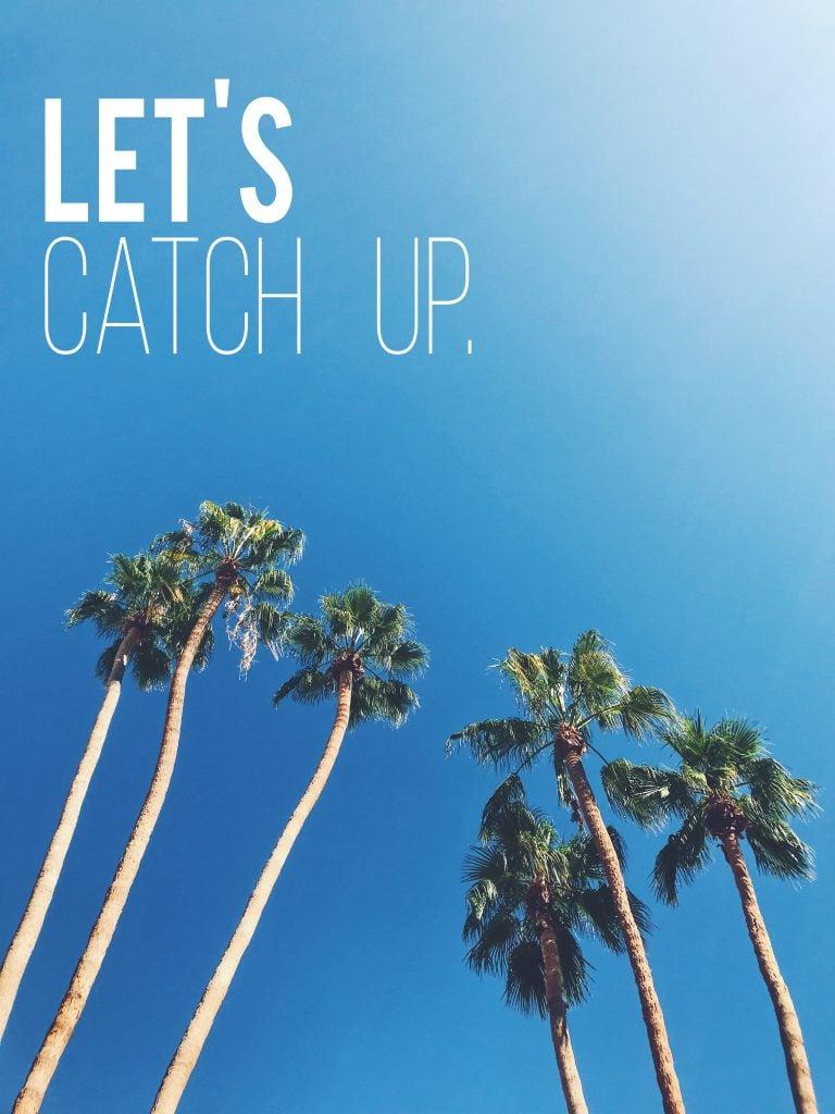 Catch Up Palm Trees Blue Sky